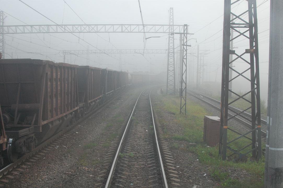 Туман вранці