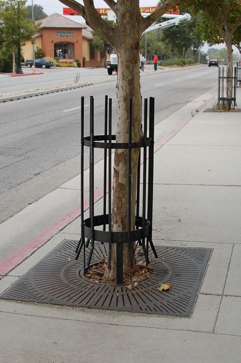 Захист для дерев