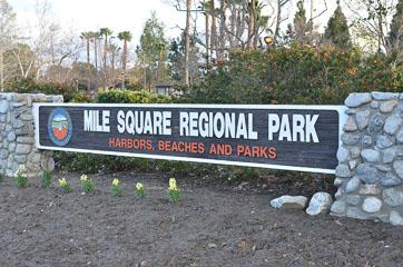 Парк в 1 кв. милю