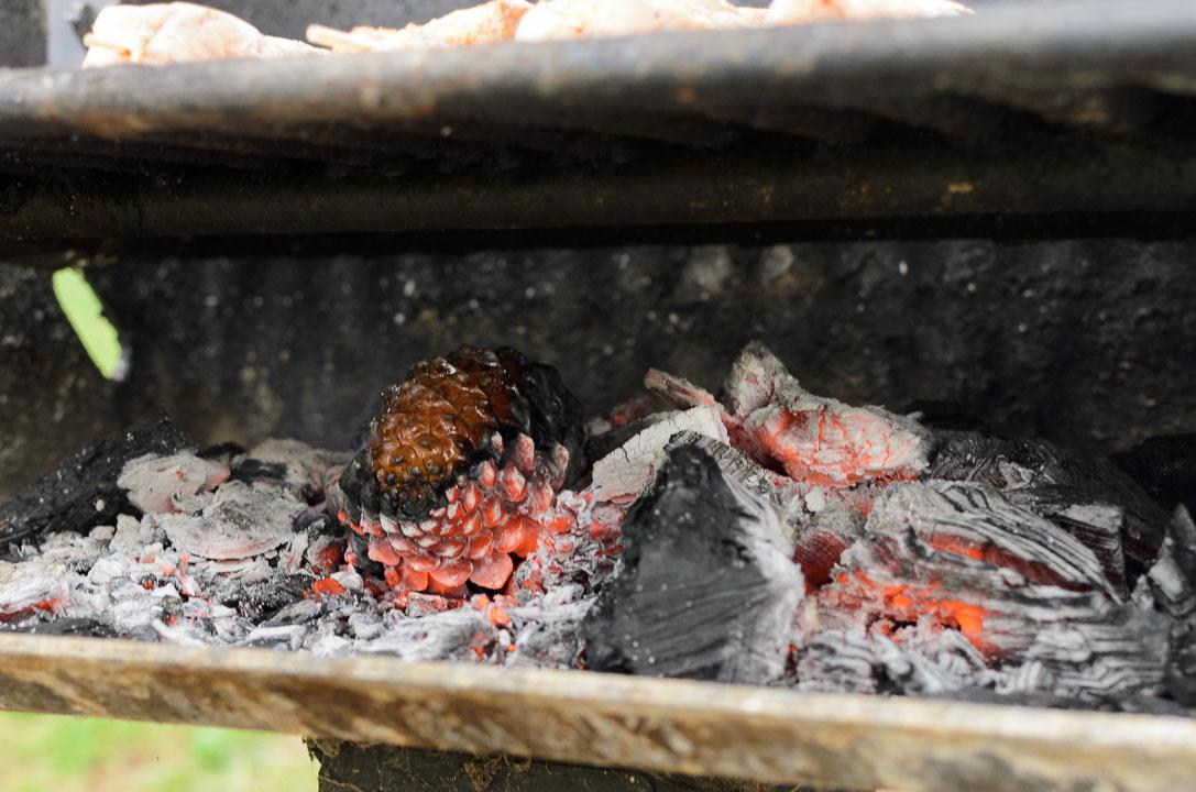 Шишка згорає