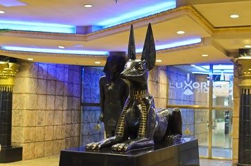 Пес біля входу в готель