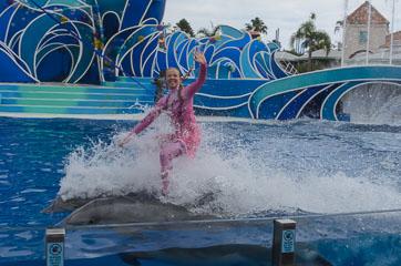 На дельфінах