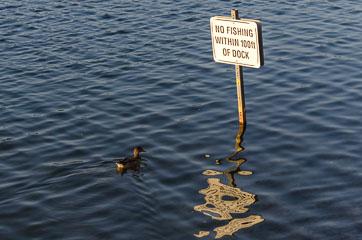 Не рибалити