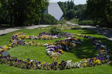 Ботанічний сад