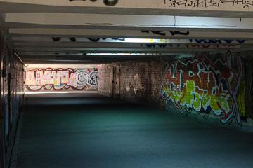 DSC_8214
